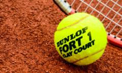 Tenis žoge Dunlop